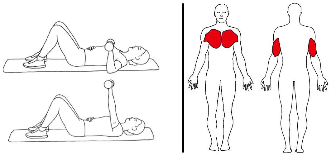 Brystpress med manual
