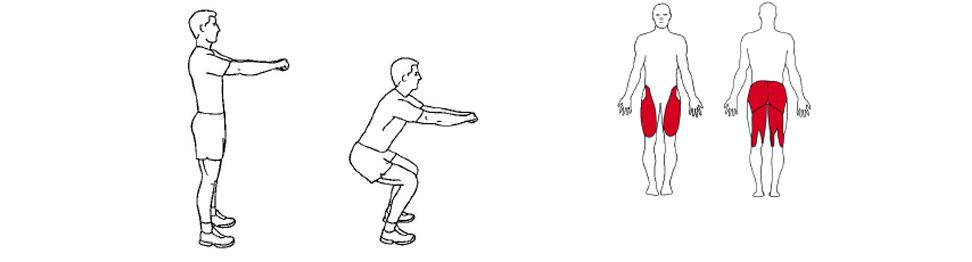 Illustrasjon av slik utføres knebøy