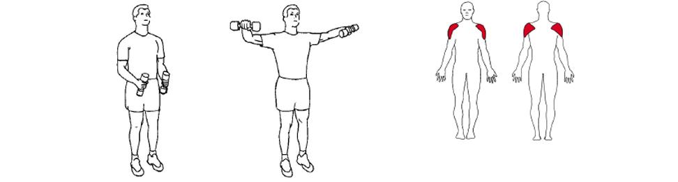 Illustrasjon av slik utføres sidehev med manualer