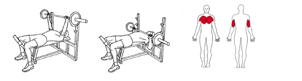 Illustrasjon av slik utføres benkpress