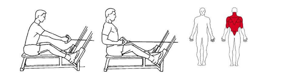 Illustrasjon av slik utføres sittende roing