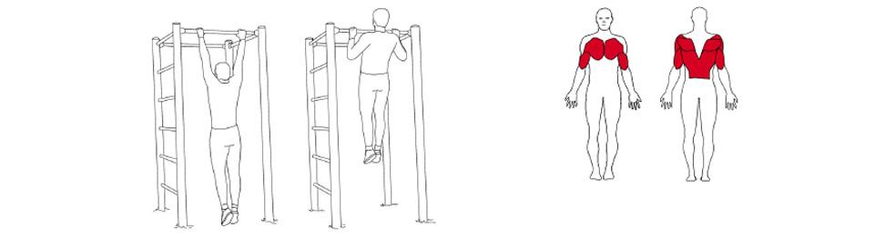 Illustrasjon av slik utføres kroppshevninger