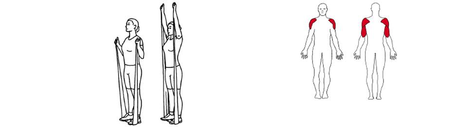 Illustrasjon av slik utføres skulderpress med strikk