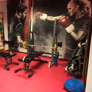 Wang Toppidrett treningsrom med olympisk styrkepakke