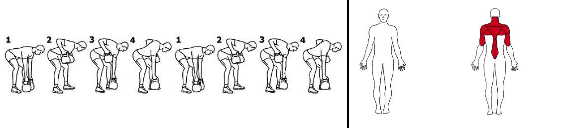 Illustrasjons bilde av stående roing med kettlebells