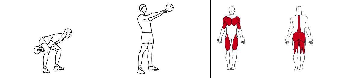 Illustrasjons bilde av To hånds sving med knebøy med kettlebells