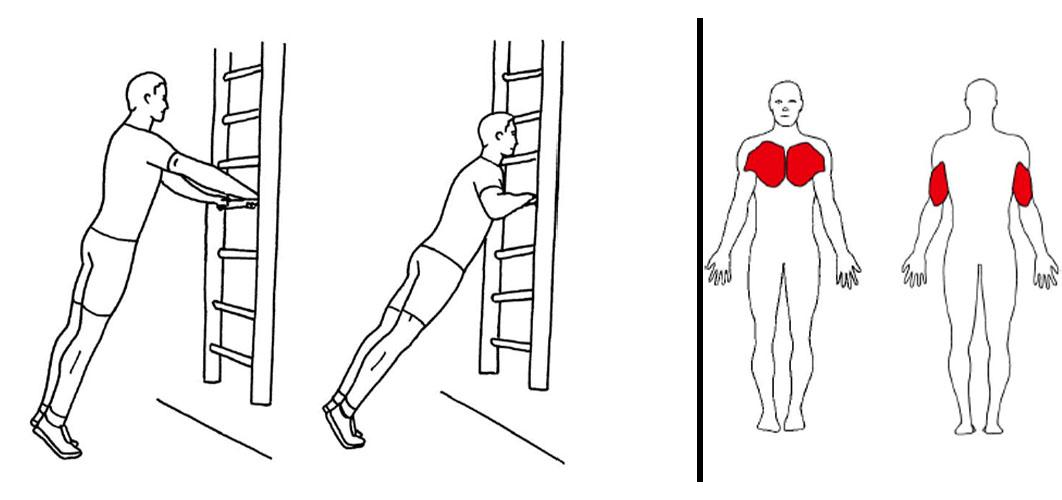 Push ups mot ribbevegg