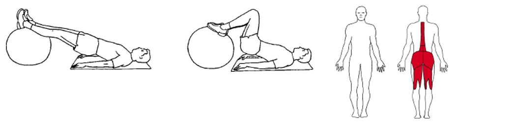 Illustrasjon av liggende lårcurl