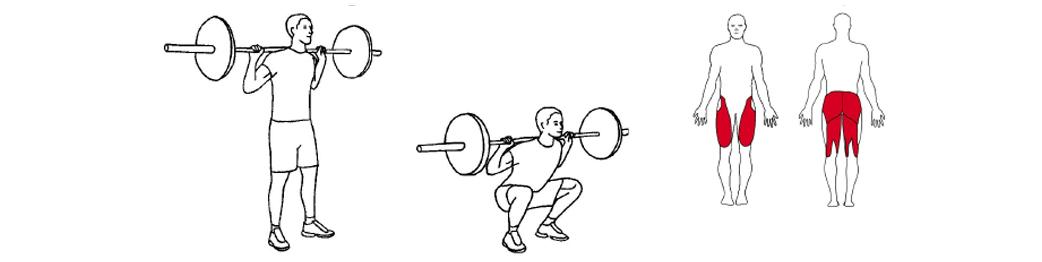 Illustrasjon av knebøy med vektstang