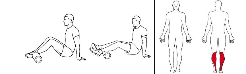 Illustrasjons bilde av trening bakside legger med foamroller