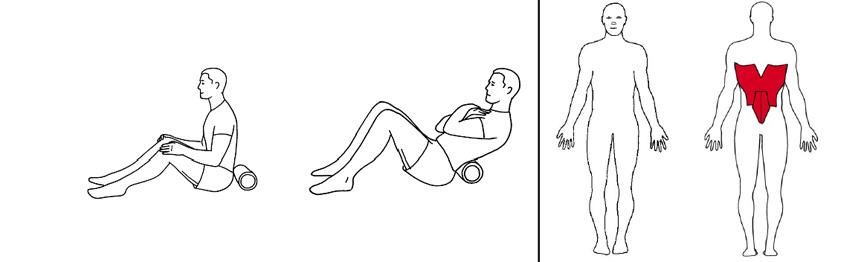 Illustrasjons bilde av trening korsrygg med foamroller