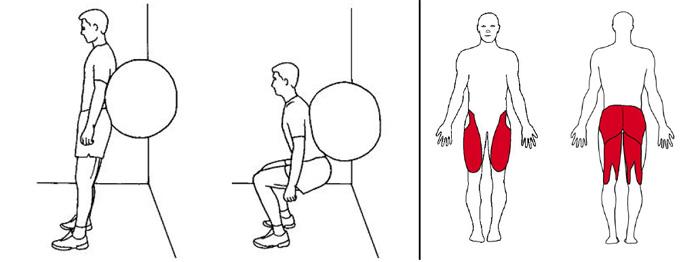 Illustrasjons bilde av knebøy m/ball