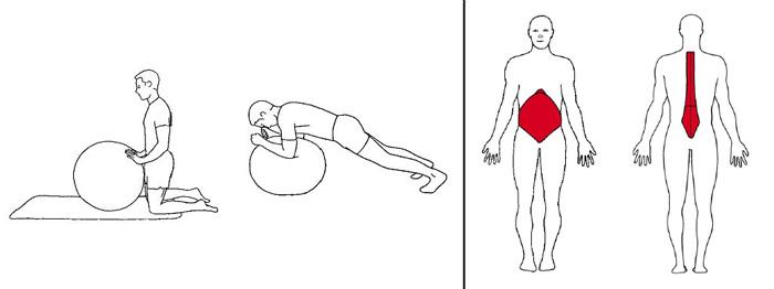 Illustrasjons bilde av albuestående stabilitetsøvelse m/ball