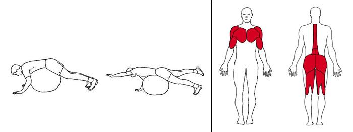 Illustrasjons bilde av diagonalhev på en ball