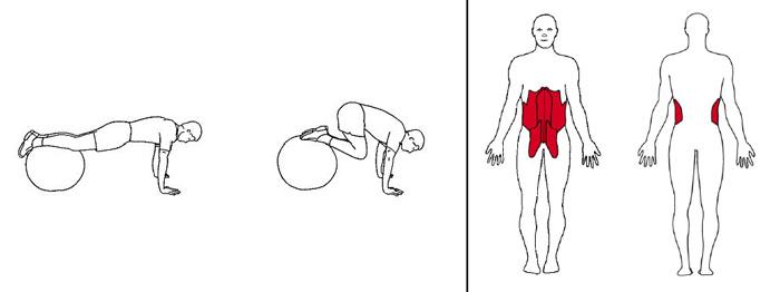 Illustrasjons bilde av kneløft på en ball