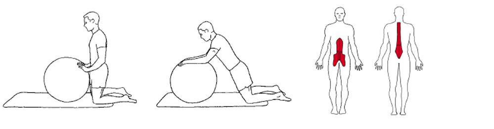 Illustrasjon viser utførelse av fremoverrulle med ball