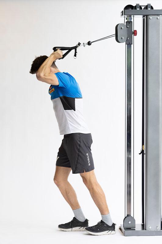 Overhead triceps press Pivot 816