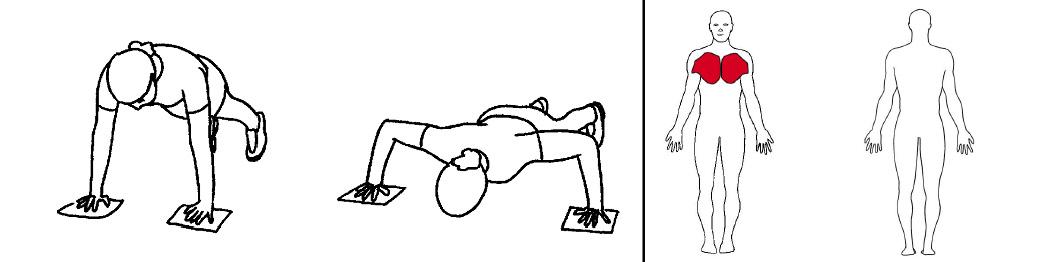 Illustrasjons bilde av flies på tå med slides