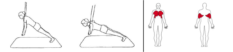 Illustrasjons bilde av brystpress m/bredt grep i slynge