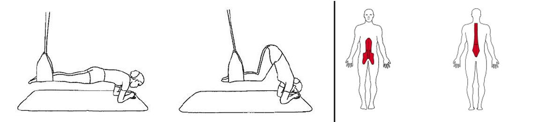 Illustrasjons bilde av hofte fleksjon i slynge
