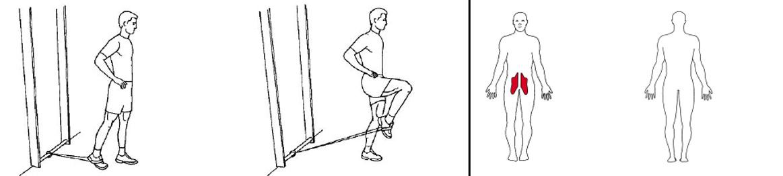 Illustrasjonsbilde av utførelse av stående kneløft m/strikk