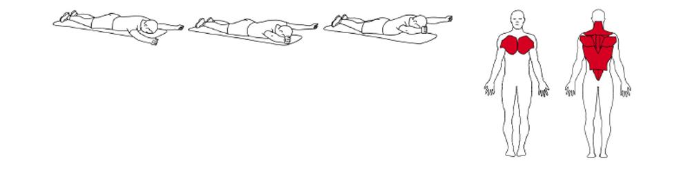 Illustrasjons bilde av utførelse av mageliggende rygghev