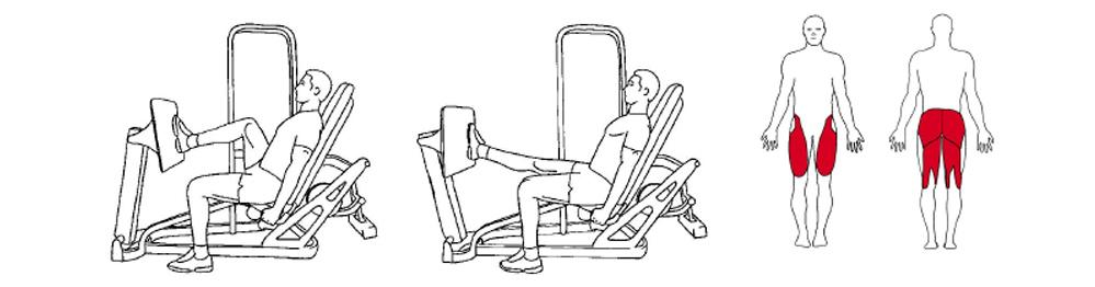 Illustrasjons bilde av utførelse avSeated Leg Press