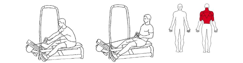Illustrasjons bilde av utførelse av sittende roing