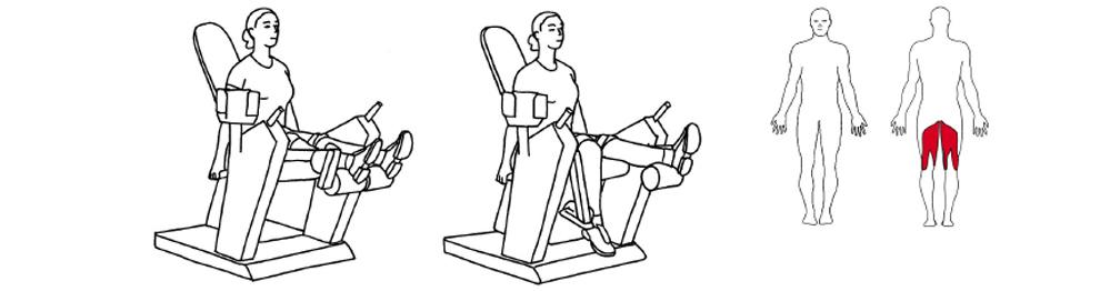 Illustrasjons bilde av utførelse av ettbens lårcurl