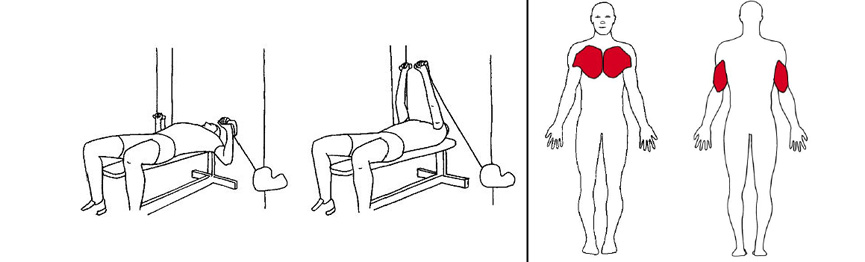 Illustrasjonsbilde avBrystpress m/håndtak med trekkapparat