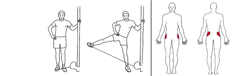Illustrasjonsbilde av Stående benhev ut med trekkapparat