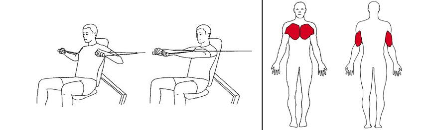 Illustrasjonsbilde av Sittende brystpress m/håndtak med trekkapparat