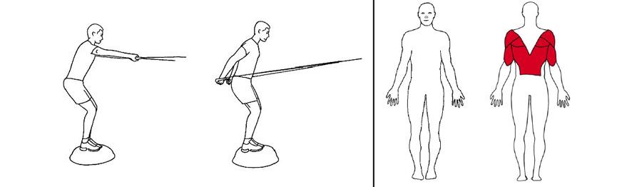 Illustrasjonsbilde av Skidrag på BOSU med trekkapparat