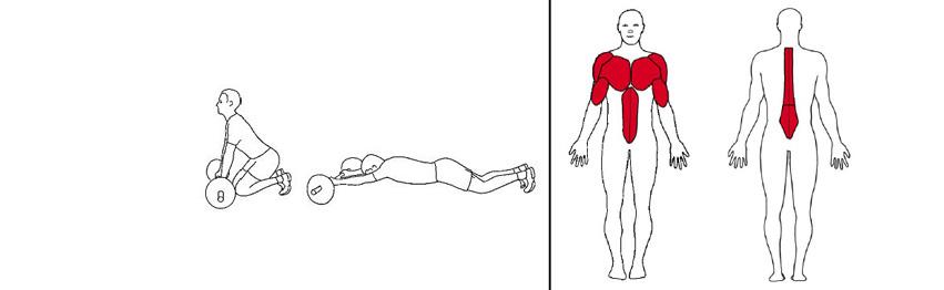 Illustrasjonsbilde av utførelse av rulle med vektstang med vektstang