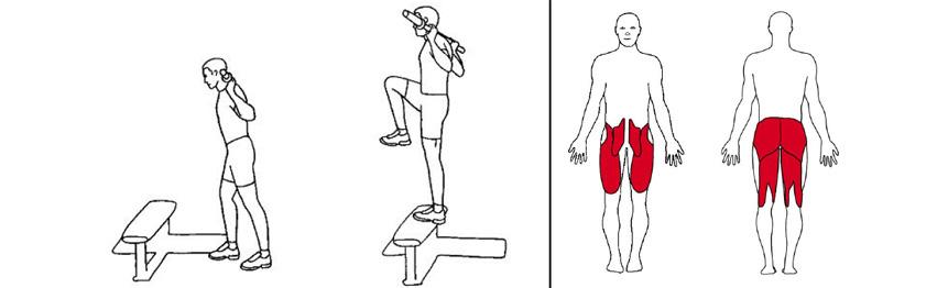 Illustrasjonsbilde av utførelse av oppstigning på benk med vektstang